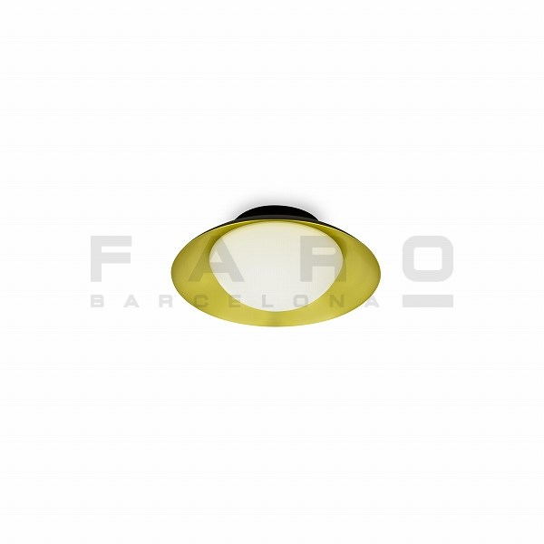 FA62134  SIDE LED Black and gold ceiling lamp G9